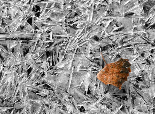 Creative Photography in Ice and Snow