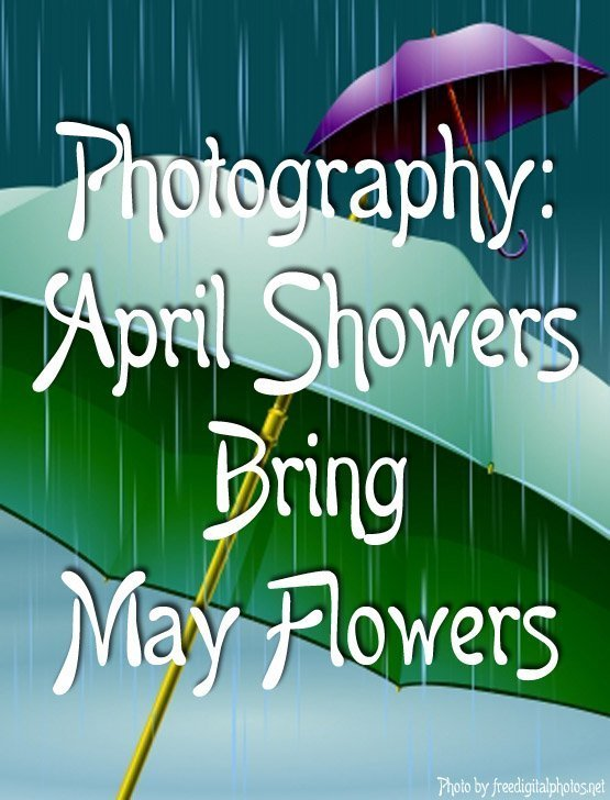 Photography April Showers Bring May Flowers