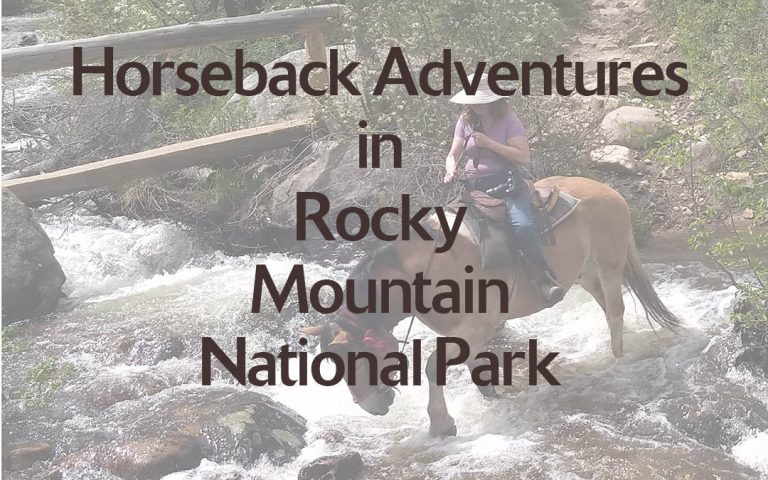 Horseback Adventures in Rocky Mountain National Park