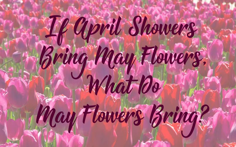 If April Showers Bring May Flowers, What Do May Flowers Bring