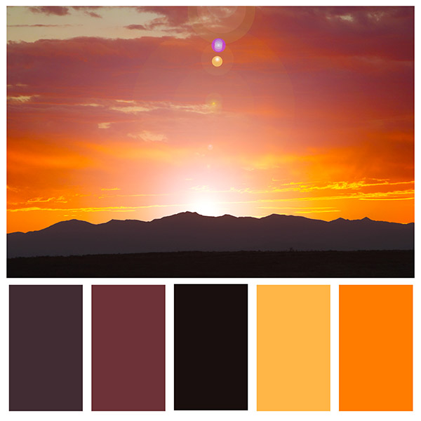 choose a color palette from nature